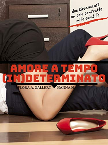 Book Cover: Amore a Tempo (In)determinato di Flora A. Gallert e Hanna M. - RECENSIONE