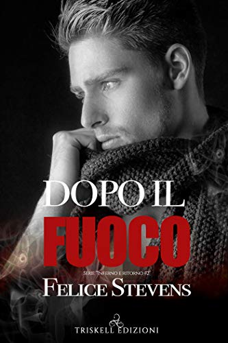 Book Cover: Dopo il fuoco di Felice Stevens - SEGNALAZIONE