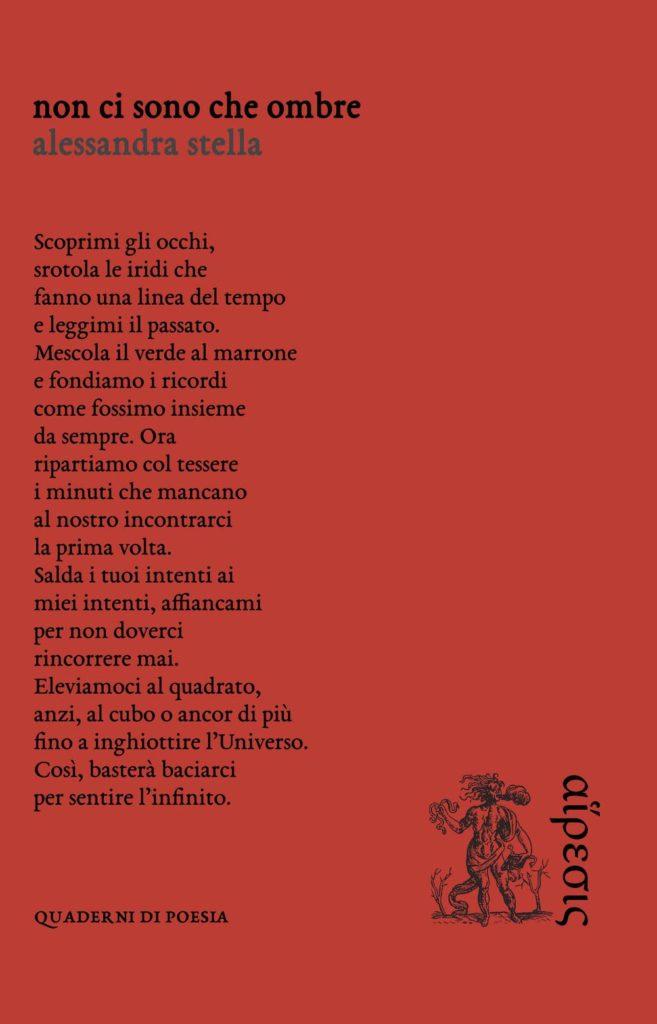 Book Cover: Non ci sono che ombre di Alessandra Stella - SEGNALAZIONE