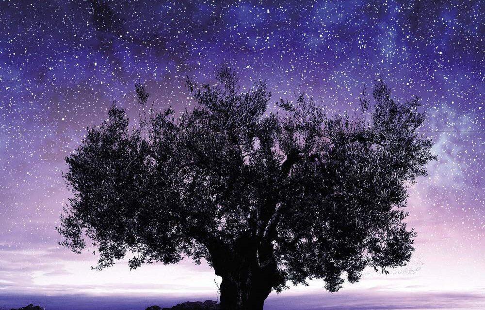 Il discorso delle stelle di Antonio Rubino – RECENSIONE