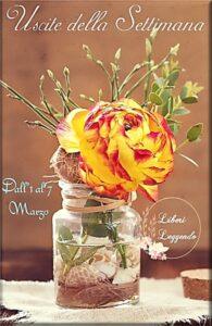 Book Cover: Uscite della Settimana dall'1 al 7 Marzo