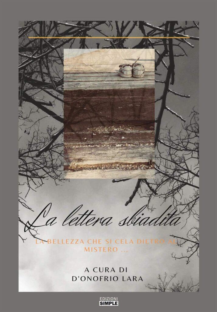 Book Cover: La lettera sbiadita. La bellezza che si cela dietro il mistero... di Lara D'Onofrio - RECENSIONE