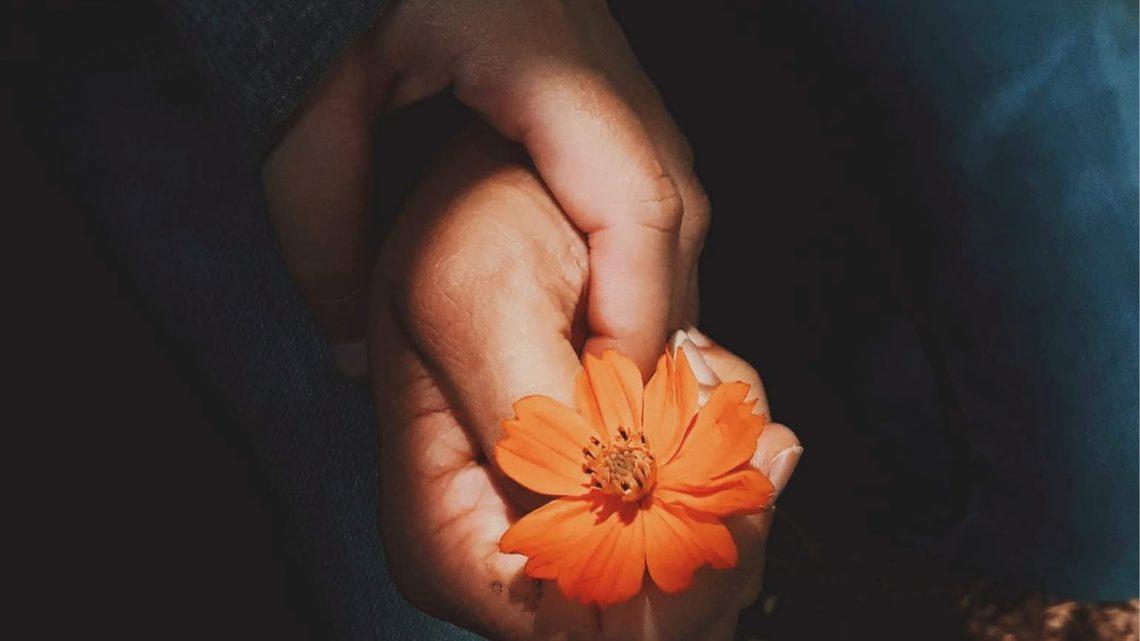 Ti ricordi com'è fatto un fiore? di Elpidio Cecere – SEGNALAZIONE