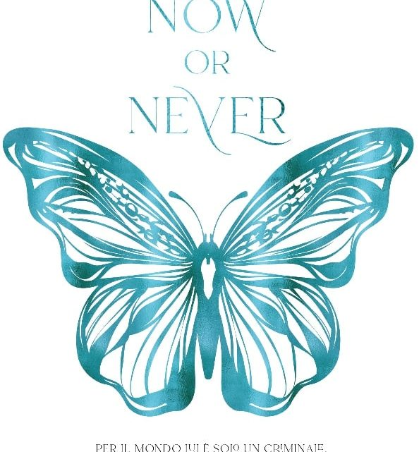 Now or Never DI B.B Reid – RECENSIONE