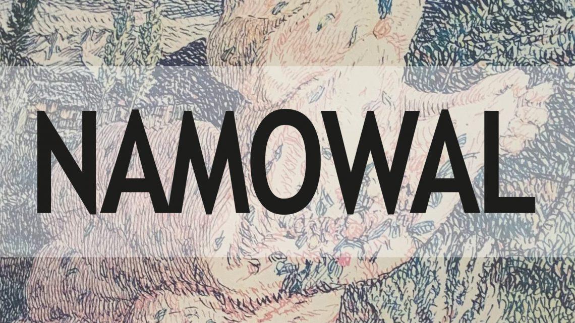 Namowal di Leonardo Alessandro Tridico – SEGNALAZIONE